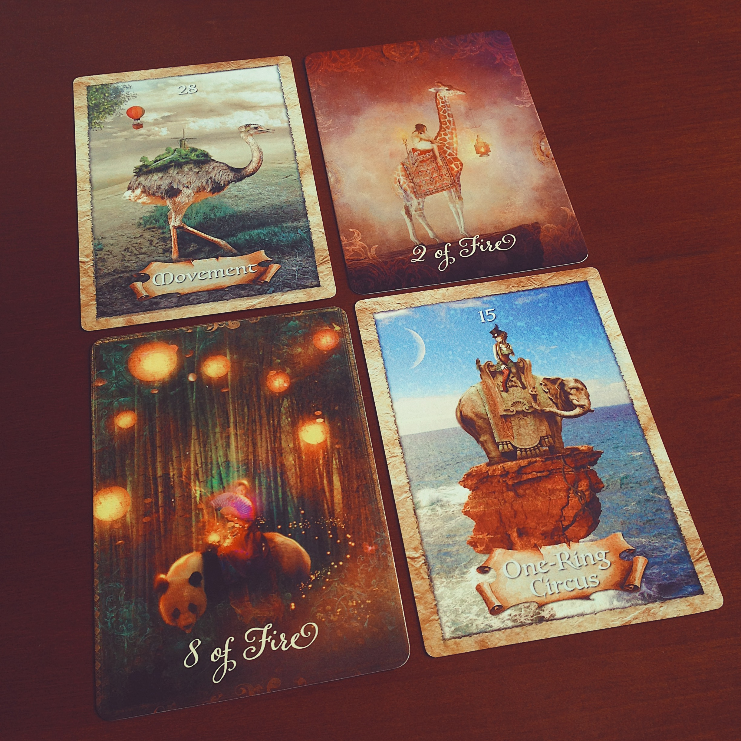 Ảnh: Nguyễn Hiếy Bộ bài: Enchanted Map Oracle Cards & The Good Tarot