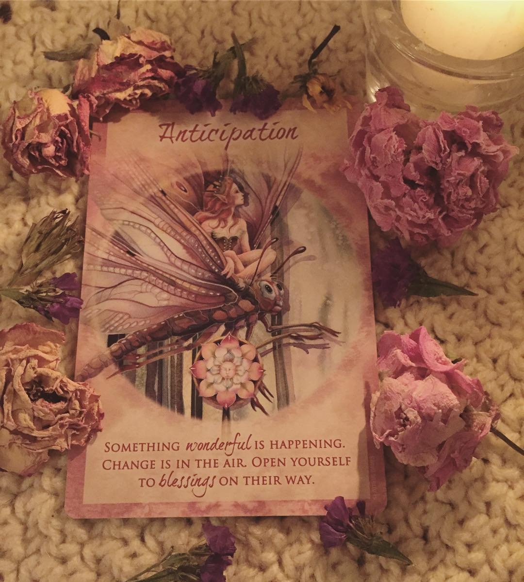Ảnh: @lily.enchanted Bộ bài: Earth Power Oracle Cards