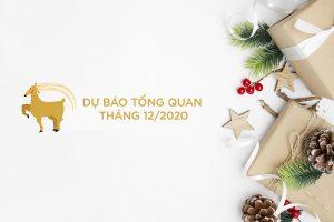 Nice christmas themed background on white background